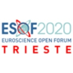 Science in the City festival – ESOF 2020